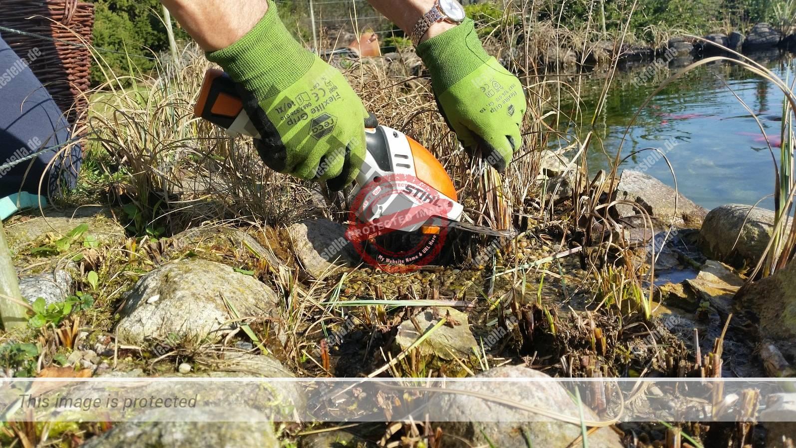 Gartenarbeit am Teich mit der Akku Grasschere