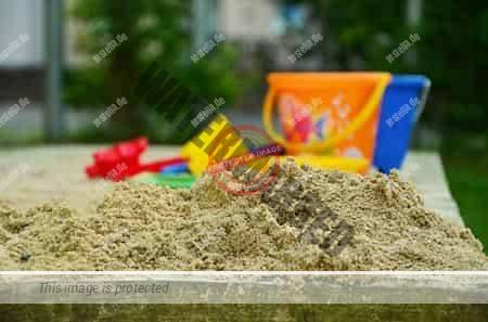 Katzen vom Sandkasten vertreiben